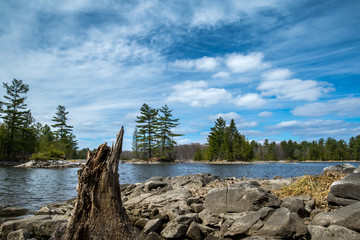Tree stump by a  bay, with rocky islands and clouds in the blue sky. Morris Island Conservation Area, Ontario Canada.