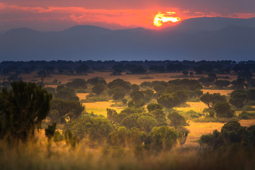 Landscape in Queen Elizabeth National Park, Uganda