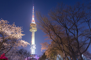 Fotobehang Seoel seoul tower in seoul city at night view in spring with cherry blossom tree, south korea.