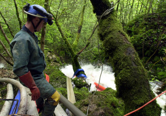 A rescuer observes the flow of water being pumped from the cave of Goumois in Eastern France, May 19..