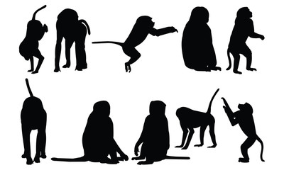 Baboon Silhouette vector illustration