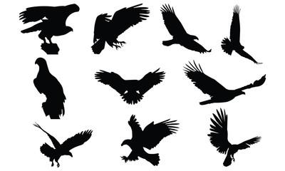 Bald eagle Silhouette vector illustration