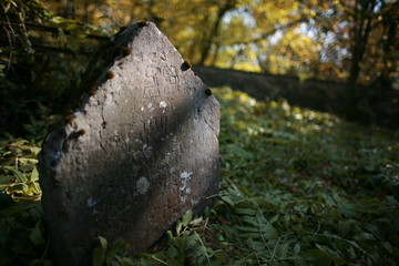 autumn on old jewish cemetery