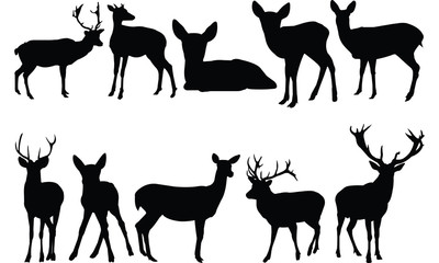 Deer Silhouette vector illustration