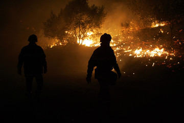 French firefighters pass the flames from a wildfire that is burning a forest in Boulternere, France.
