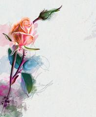 Beautiful orange rose, Watercolor painting