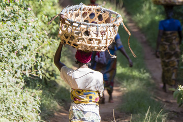 African Woman with Basket on Head Walking on a Rural Road