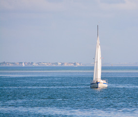 A sail boat on Tampa Bay in Saint Petersburg, Florida