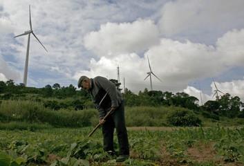 A farmer works near wind turbines in the Sierra del Rey mountain range, about 100km (62 milles) from Lisbon