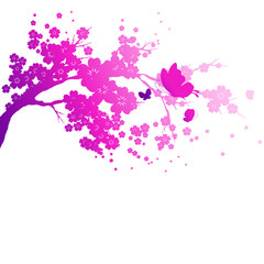 violet silhouete,flowers tree , on a white