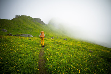 Man hiking by hazy green mountain side, Iceland, Europe