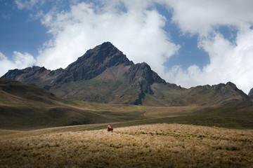 Person horse riding by mountains, Ecuador, South America