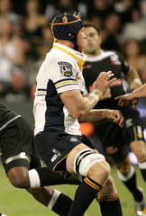 File photo of Australia's ACT Brumbies rugby forward Shawn MacKay in action against the Sharks in Durban