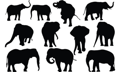 Elephant Silhouette vector illustration