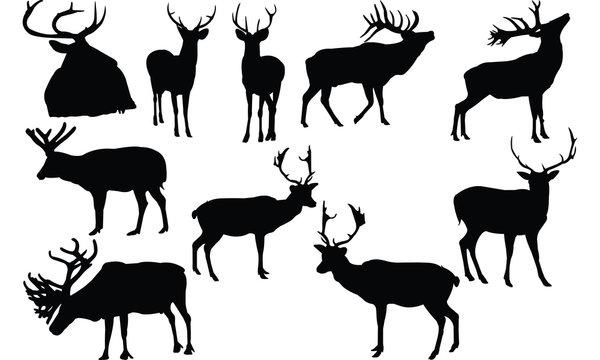 Elk Silhouette vector illustration