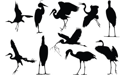 Herron Silhouette vector illustration