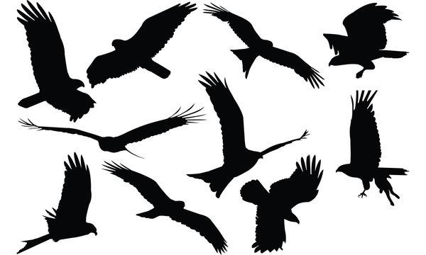 Kite Silhouette vector illustration