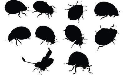 Ladybug Silhouette vector illustration