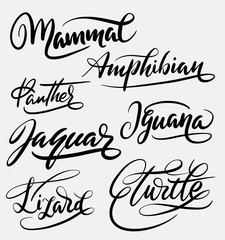 Mammal and amphibian hand written typography. Good use for logotype, symbol, cover label, product, brand, poster title or any graphic design you want. Easy to use or change color