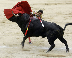 Bullfighter El Fundi stabs his sword into a bull during a bullfight in Madrid