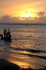 golden sunset, Saipan A golden sunset casts breathtaking reflections on the seashore.