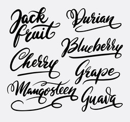 Jack fruit and durian hand written typography. Good use for logotype, symbol, cover label, product, brand, poster title or any graphic design you want. Easy to use or change color