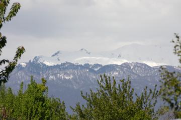 The nature of Abkhazia