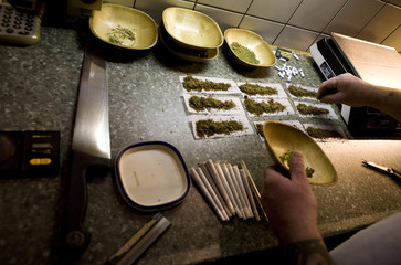 An employee places weed in joints which are to be sold in a coffee shop in Bergen op Zoom