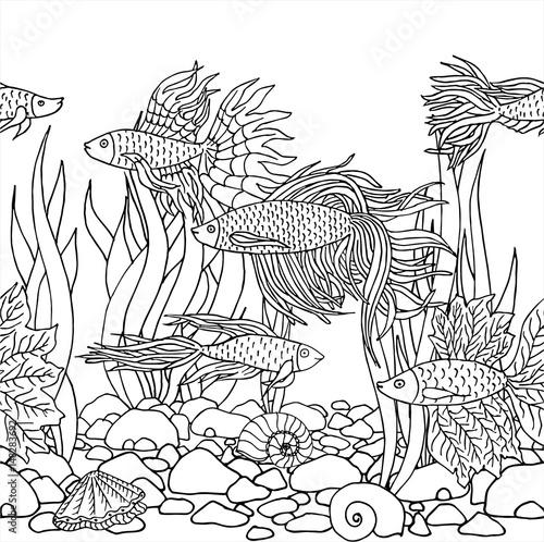 Hand Drawn Vector Fish Seaweed Seashells Stones Beautiful Hand