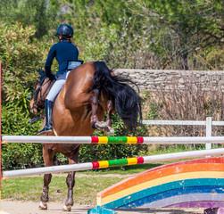 Equitation, saut d'obstacles, compétition.