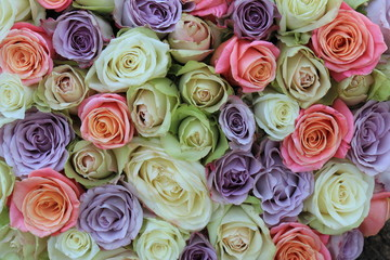 Mixed pastel roses for a wedding