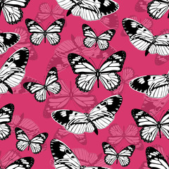 Butterflies seamless pattern, monochrome vector background. Black and white various insects on a pink backdrop. For fabric design, wallpapers, wrappers, print