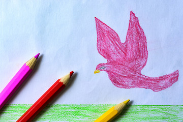 A child's drawing of a pink dove, grass and sky with colored pencils
