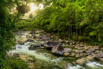 Mossman Gorge - river in Daintree National Park, Queensland, Australia