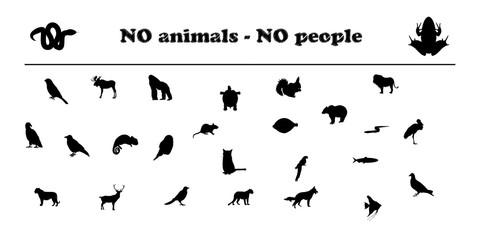 animals silhouettes no animals no people