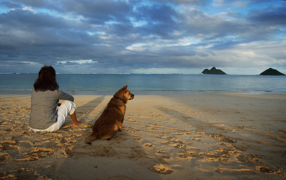 A dog-owner admires the view at Lanikai beach in Kailua, Hawaii, with her dog.