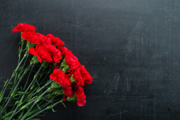 Carnation on a dark background copy space
