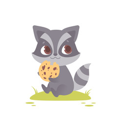 Cute baby raccoon sitting, eating a cookie.