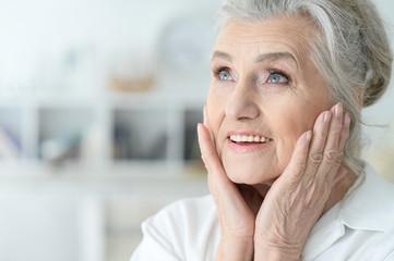 Beautiful gray-haired elderly woman