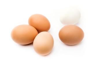 Grupo de huevos morenos y uno blanco