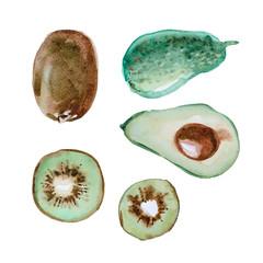 Set of watercolor fruit, slice kiwi and  avocado