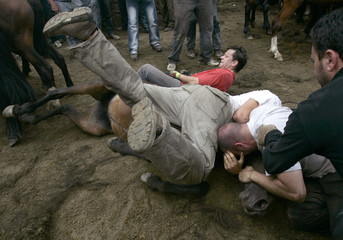 """Revellers try to hold on to a wild horse during the """"Rapa Das Bestas"""" traditional event in Sabucedo"""