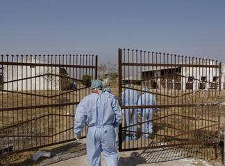 Indian veterinarians enter a bird flu-infected poultry farm in Navapur village