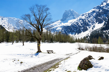 Wall Mural - Mountain landscape in the early springtime. Austria, Tyrol, Karwendel Alpine Park, near Gramai