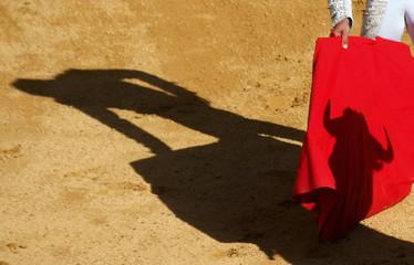 Spanish bullfighter Jose Ignacio Ramos prepares to perform a pass during a bullfight San Pedro's in Burgos