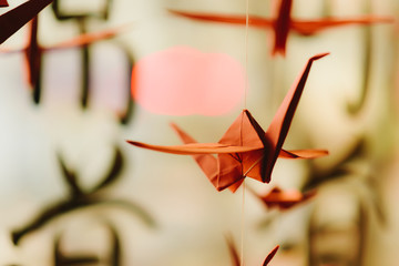Origami hangs on the background of hieroglyphs