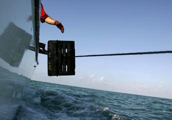 Crabber throws crab cage into the sea north of Marathon in the Florida Keys