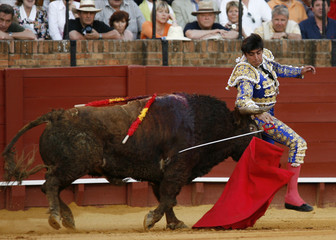 Spanish matador Miguel Angel Perera is tackled by a bull during a bullfight in Seville