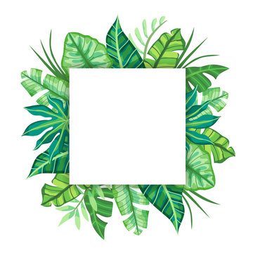 Square label design with Tropical Leaves. Suitable for nature concept, vacation, and summer holidays. Vector Illustration.