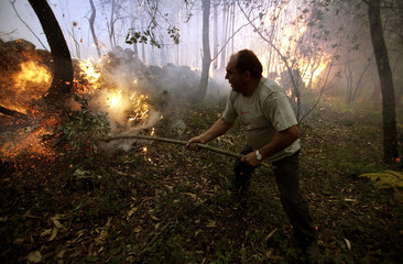 Villager tries to put out forest fire in the village of Pedreiras